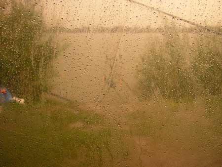 Bivvy im Regen