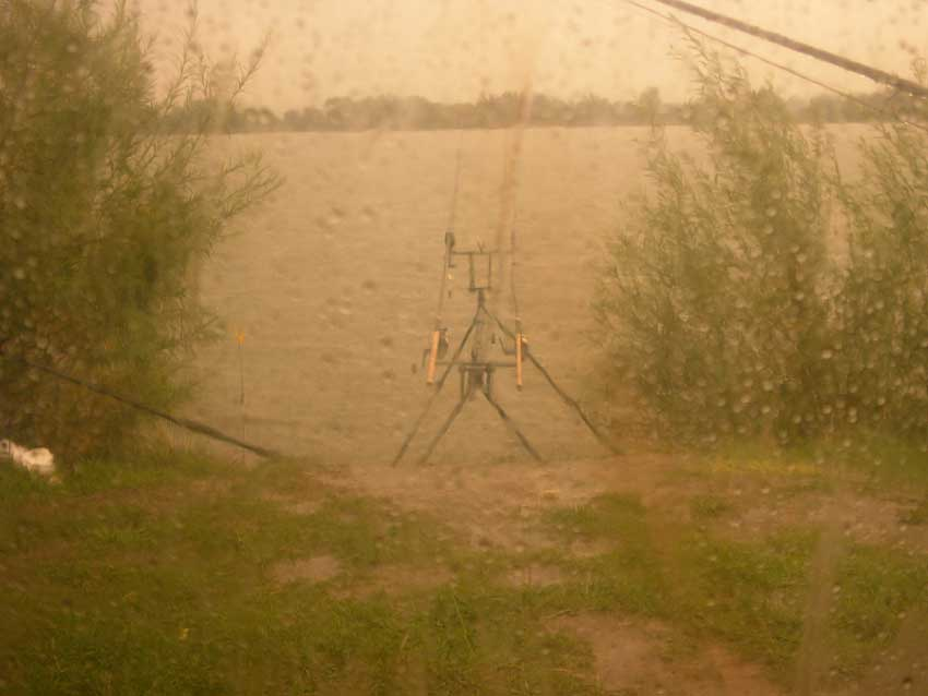 Karpfenzelt im Regen